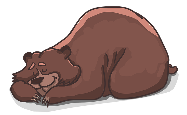 niedźwiedź, dowcipy, zabawne, dowcipy o zwierzętach